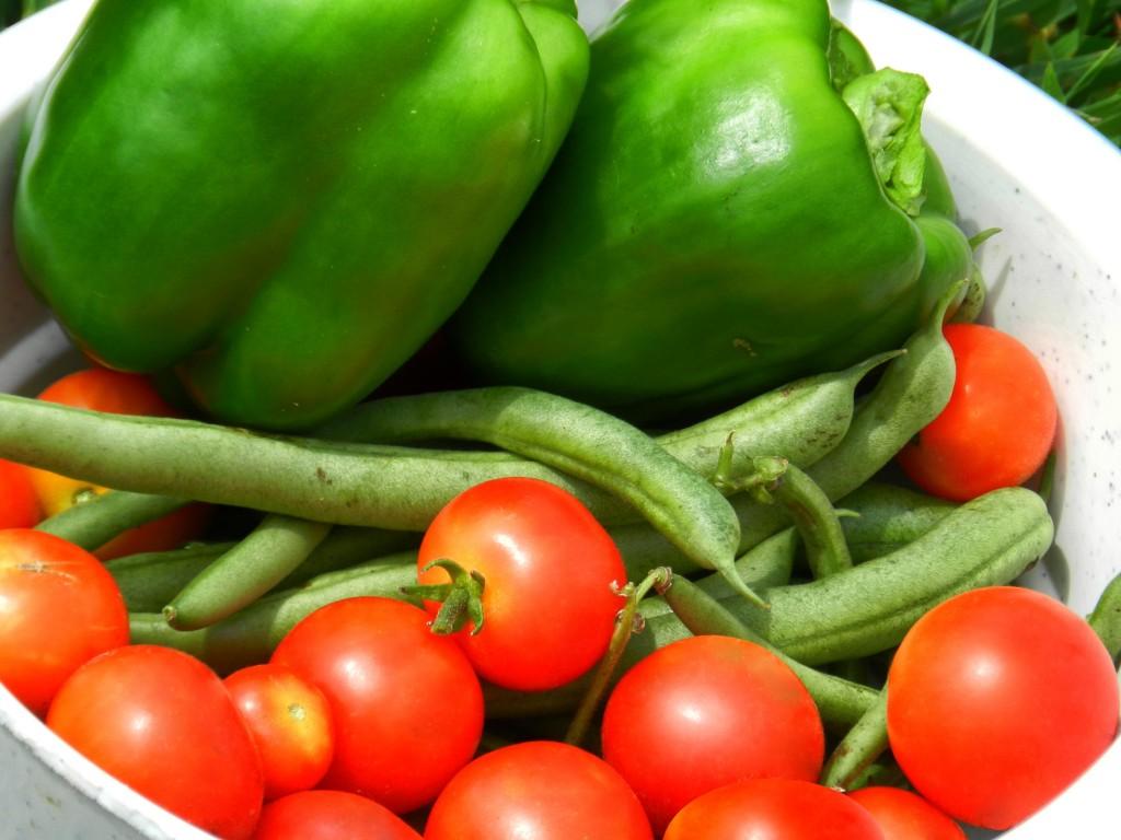La alimentación mediterránea, modelo de alimentación saludable.